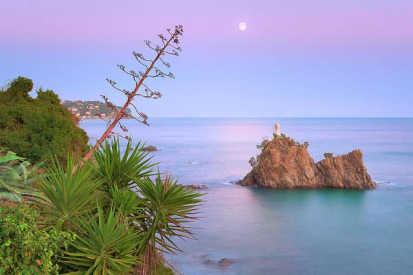 Photograph - Serenade by Giovanni Allievi