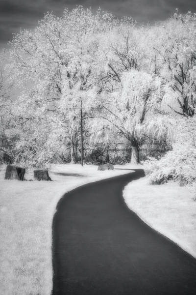 Photograph - Serene Path Bw by Susan Candelario