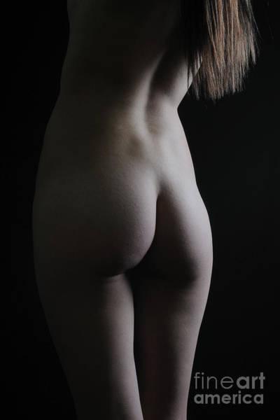 Photograph - Serene Shadows by Robert WK Clark