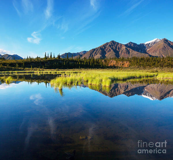National Wildlife Refuge Wall Art - Photograph - Serenity Lake In Tundra On Alaska by Galyna Andrushko