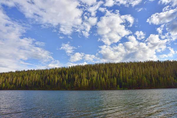 Camera Raw Photograph - Serenity On Grassy Lake by Brenton Cooper