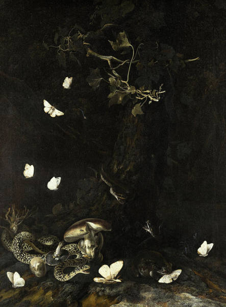 Wall Art - Painting - Serpents And Insects, 1647 by Otto Marseus van Schrieck