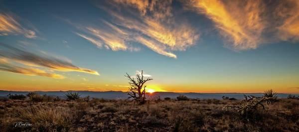 Photograph - Serria Vieja Sunset by David Pine