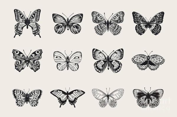 Wall Art - Digital Art - Set Of Butterflies. Vector Vintage by Olga Korneeva
