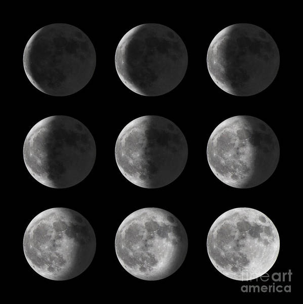 Wall Art - Photograph - Set Of Moon Phases For New, Half, And by David Carillet