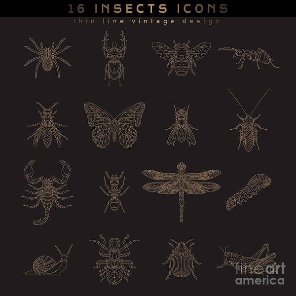 Sticker Wall Art - Digital Art - Set Of Vintage Thin Line Insects Icons by Karnoff