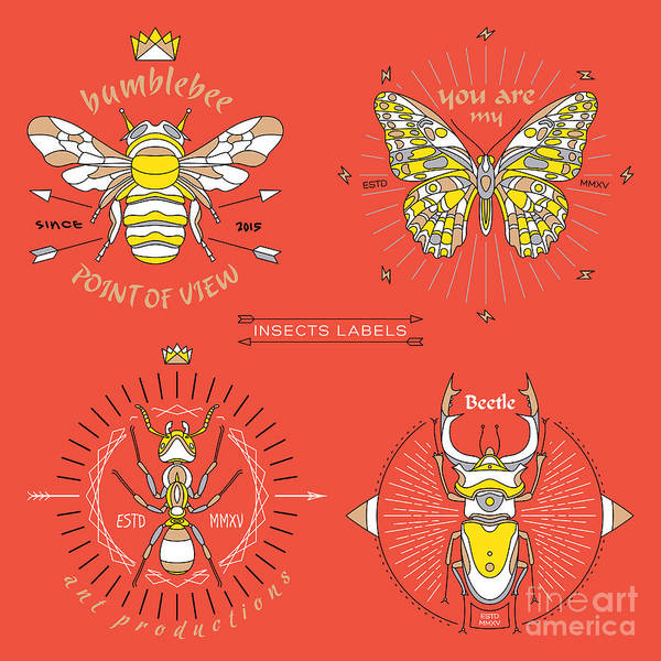 Sticker Wall Art - Digital Art - Set Of Vintage Thin Line Insects Labels by Karnoff