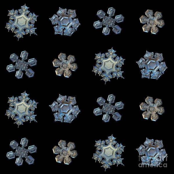 Set With Snowflakes Isolated On Black Art Print
