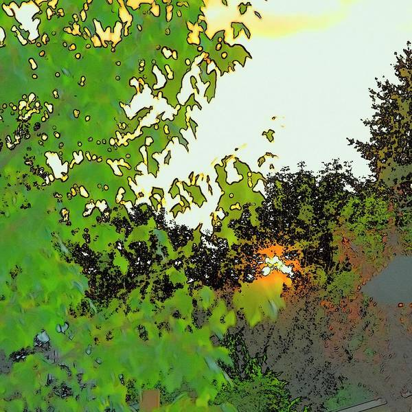 Photograph - Setting Sun And Maple Color Sketch by Jerry Sodorff