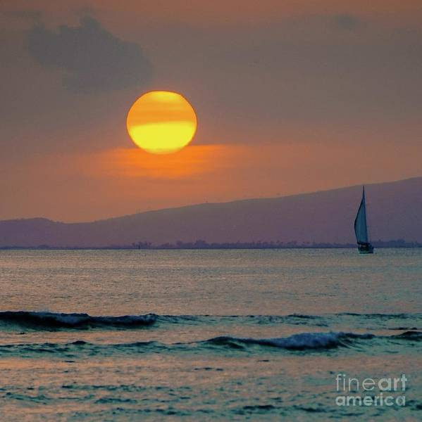 Photograph - Setting Sun by D Davila