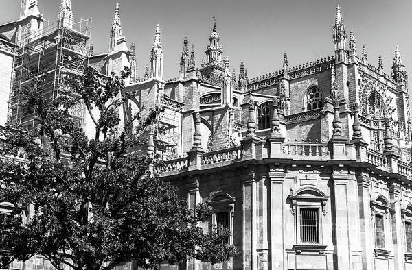 Wall Art - Photograph - Seville Cathedral Top by John Rizzuto