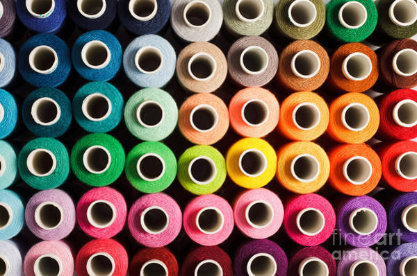 Silky Wall Art - Photograph - Sewing Threads As A Multicolored by Oksana Shufrych