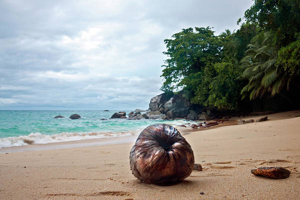 Photograph - Seychelles  by Gouzel -