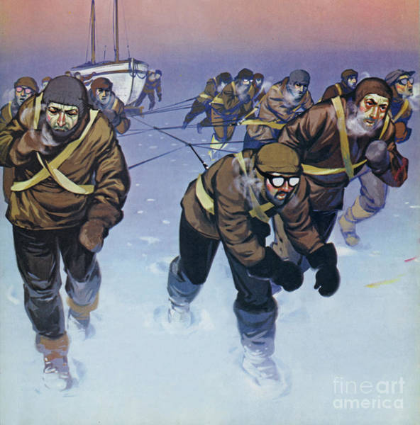 Wall Art - Painting - Shackleton In The Antarctic  by Angus McBride