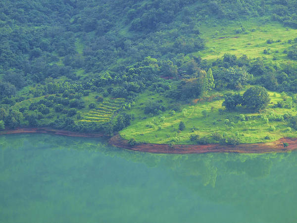 India Photograph - Shades Of Green On A Mountain In by Ravi Gogte, Pune, India