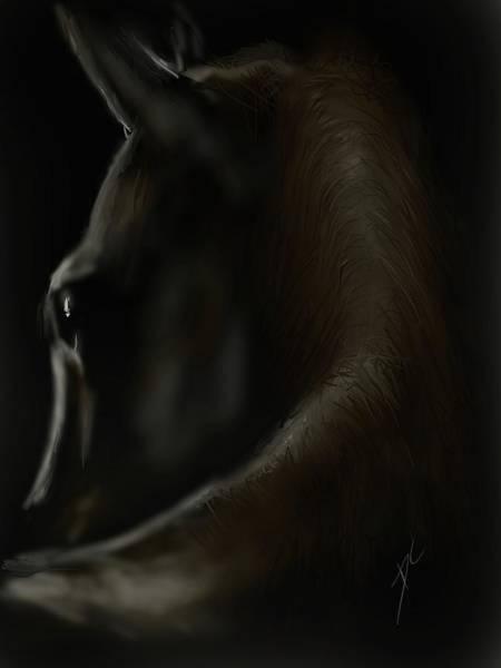 Digital Art - Shadow Horse by Darren Cannell