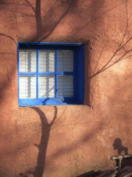 Photograph - Shadow Interrupted by Mary Lee Dereske