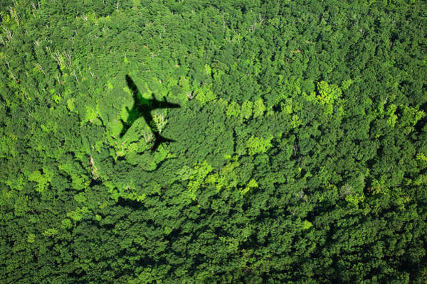 Away From It All Wall Art - Photograph - Shadow Of Airplane Over Forest by Thomas Jackson