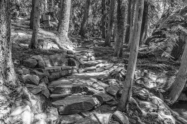 Photograph - Shadow Path by Kristopher Schoenleber