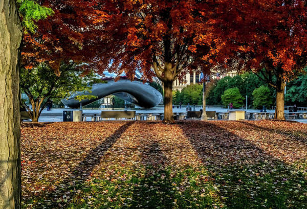 Photograph - Shadows Lead To Fall Colors And Chicago's Bean  by Sven Brogren