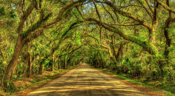Photograph - Charleston S C Shadows On Edisto Island Botany Bay Road South Carolina Landscape Art by Reid Callaway