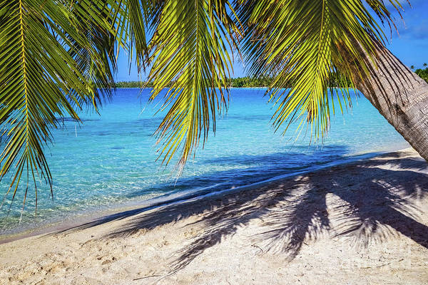 Photograph - Shadows On The Beach, Takapoto, Tuamotu, French Polynesia by Lyl Dil Creations