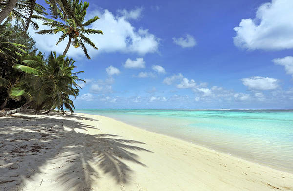 Rarotonga Photograph - Shady Beach by Oversnap
