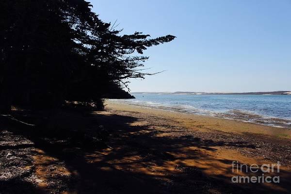 Shady Cove Photograph - Shady Cove by Katherine Erickson