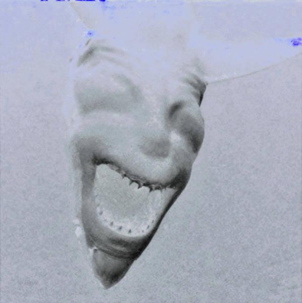 Photograph - Devil Shark Negative by Rob Hans