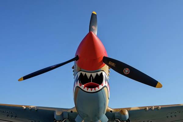 Photograph - Shark Teeth And Steel by Chris Buff