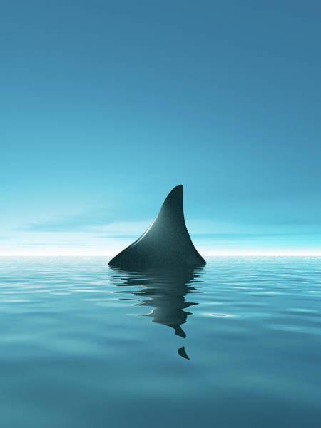 Digital Image Digital Art - Shark Waiting In Th Calm Blue Sea by Artpartner-images