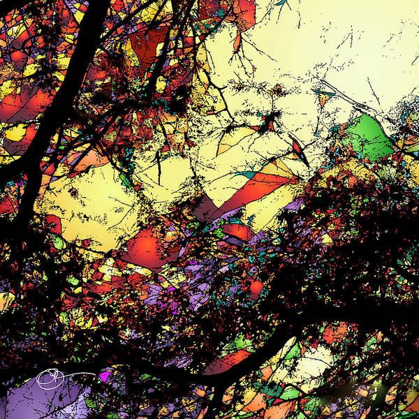 Digital Art - Shatter 2 by Lucas Boyd