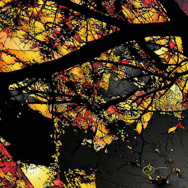 Digital Art - Shattered Lava by Lucas Boyd