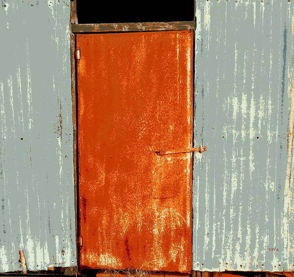Photograph - Shearing Shed Door by VIVA Anderson