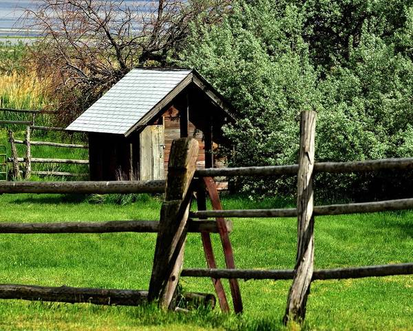 Photograph - Shed And Fence by Jerry Sodorff