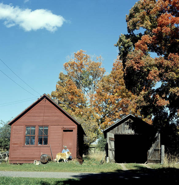 Vertical Landscape Photograph - Shed In Fall by Robert Natkin