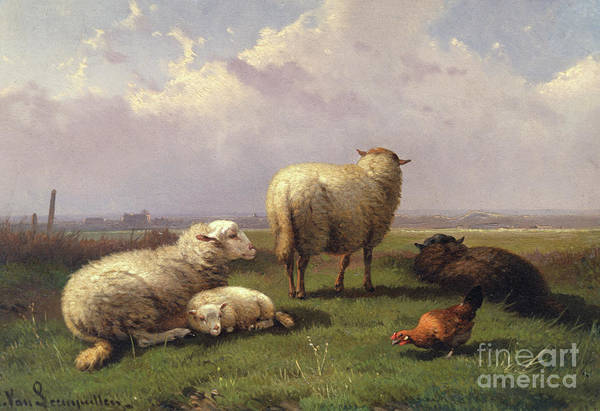 Wall Art - Painting - Sheep Dozing In A Pasture, 19th Century by Cornelis van Leemputten