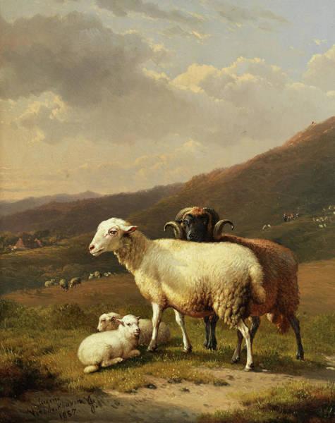 Eugene Joseph Verboeckhoven Painting - Sheep In A Landscape by Eugene Joseph Verboeckhoven