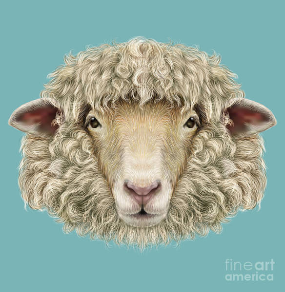 Wall Art - Digital Art - Sheep Portrait. Illustrated Portrait Of by Ant art