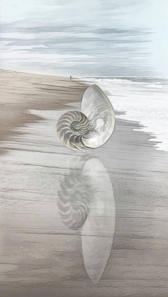 Photograph - Shell Reflections In The Sand In Pale Tones by Debra and Dave Vanderlaan