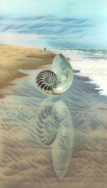 Photograph - Shell Reflections In The Sand In Waves by Debra and Dave Vanderlaan