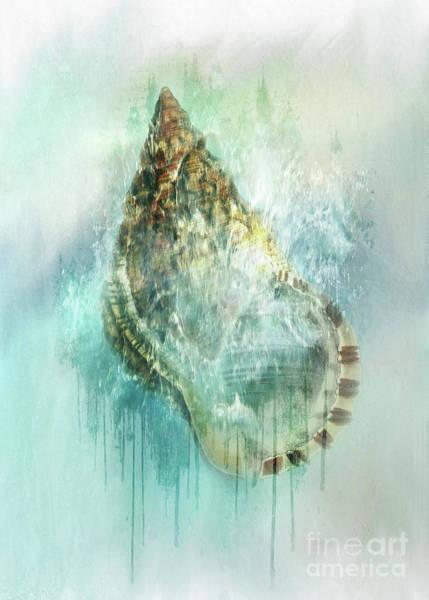 Wall Art - Digital Art - Shell Splash by Kelley Freel-Ebner