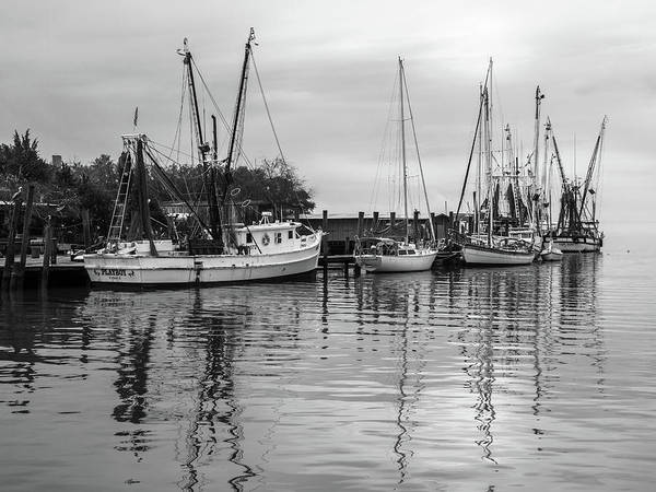 Photograph - Shem Creek Playboy by Donnie Whitaker