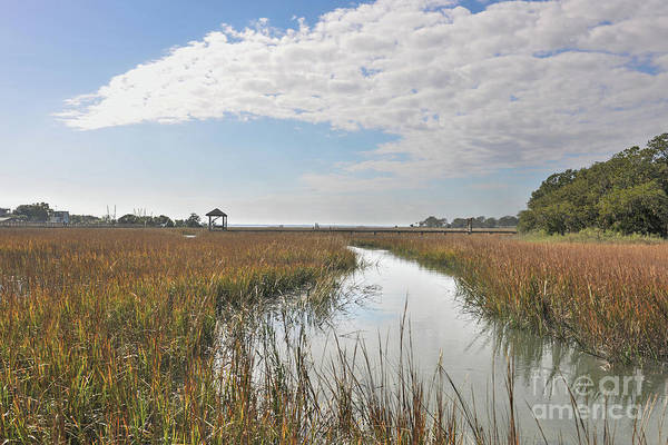 Photograph - Shem Creek Salt Marsh Sunny Day by Dale Powell