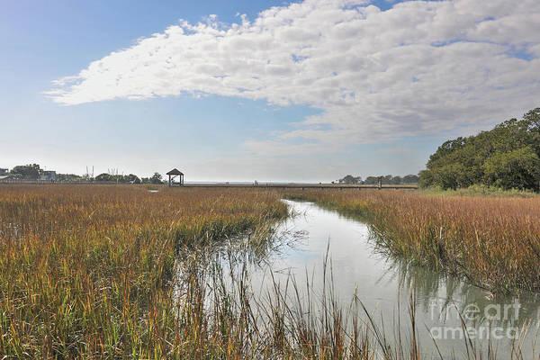 Photograph - Shem Creek Salt Marsh Sunny Day by Dale Powell