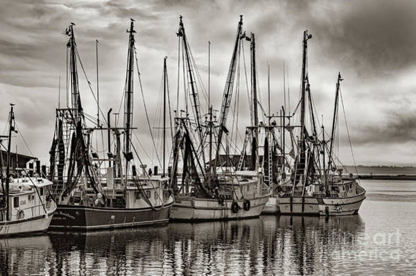 Photograph - Shem Creek Saltwater Cowboys In Sepia by Dale Powell
