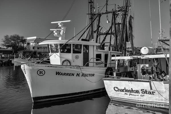 Photograph - Shem Creek - Working Boats by Dale Powell