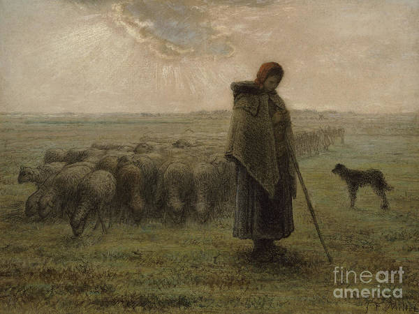Wall Art - Pastel - Shepherdess And Her Flock By Millet by Jean-Francois Millet