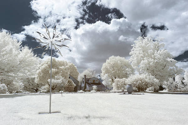 Photograph - Sherwood Ir 1 by Brian Hale