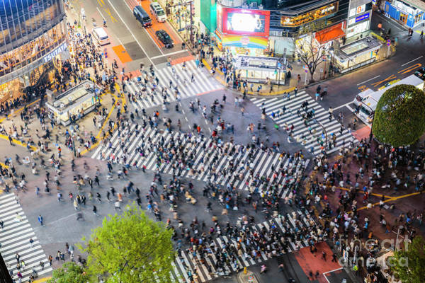 Wall Art - Photograph - Shibuya Crossing From The Top, Tokyo, Japan by Matteo Colombo